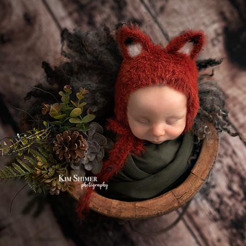woodland theme baby