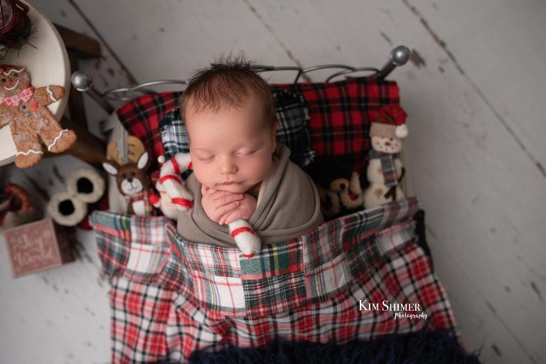 newborn holiday session