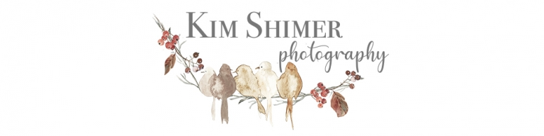 Kim Shimer - New Hampshire Photographer